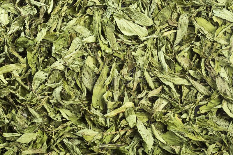 Stevia Leave-Dry (AGRO-12ARC)