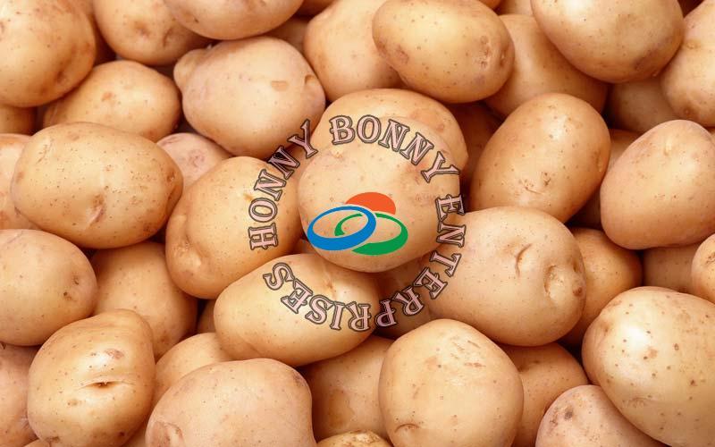 Fresh Potato (HBEPOTATO)
