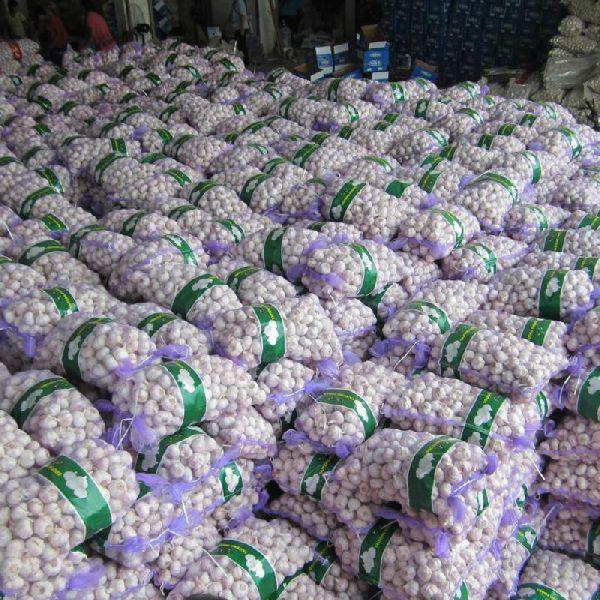 2019 New Crop Normal White Fresh Garlic for Sale