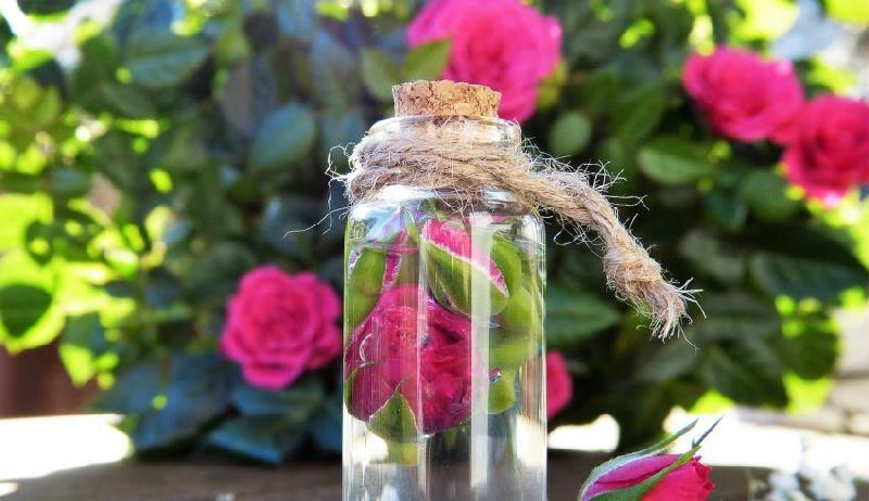 Steam Distilled Rose Water