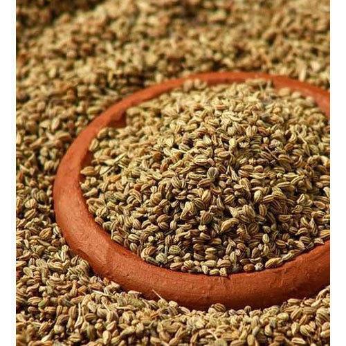 Ajwain Seeds Trachyspermum Ammi Exporters In Karaikudi Tamil