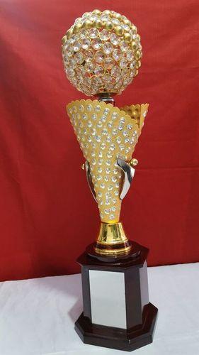 Designer Metal Trophy