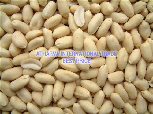 Blanched Java Peanuts Seeds