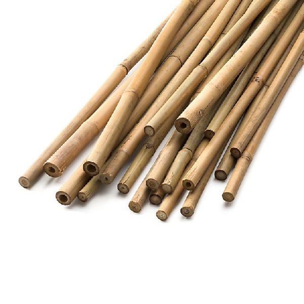 Bamboo Poles