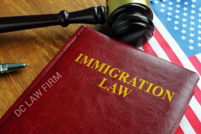 Services - Immigration Lawyer from Tamil Nadu India by dc law firm ...
