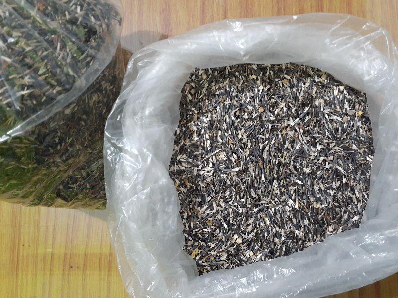 Marigold Seeds (MGSD-001)