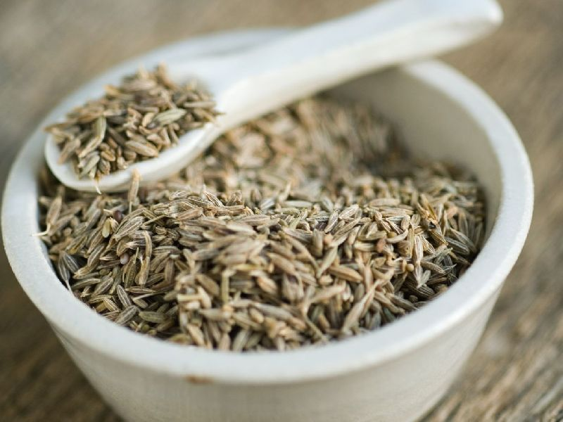 Cumin Seeds Manufacturer In Kolkata West Bengal India By