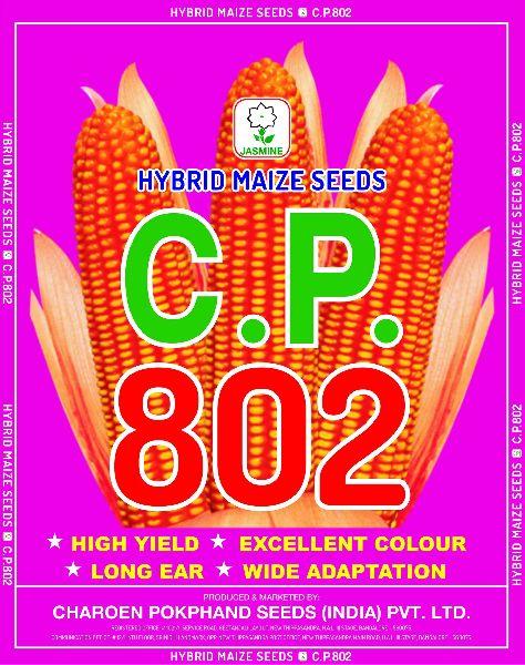 C.P. 802 Hybrid Maize Seeds