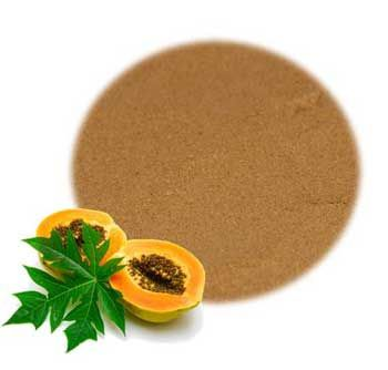 Dried Papaya Leaves Powder
