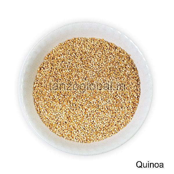 Quinoa Seeds (Q1)