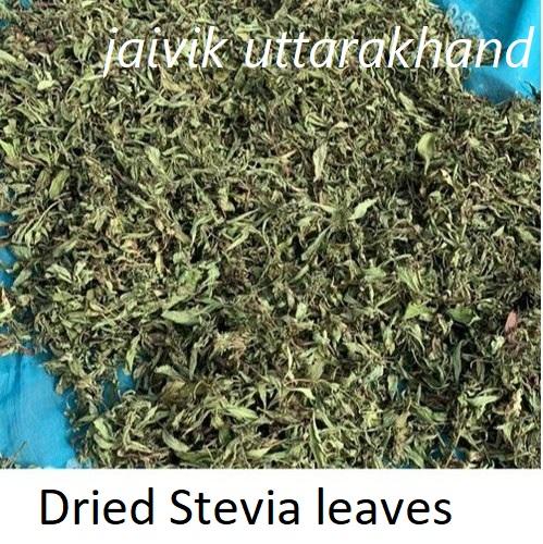 Organic Stevia Dry Leaves (A103)
