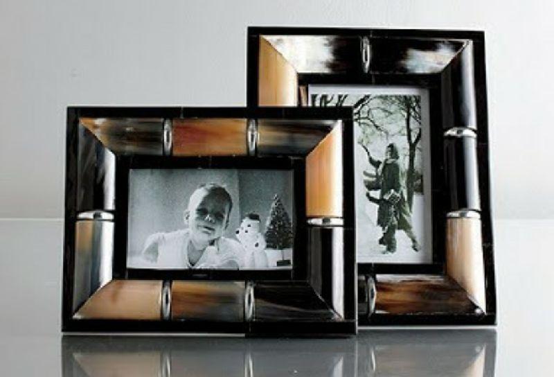 Horn & Resin Photo Frame
