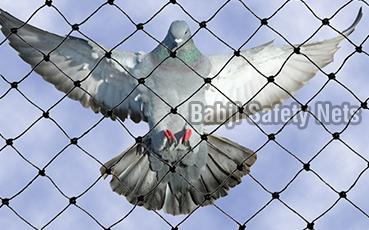 Anti Bird Net (5608)