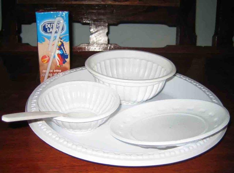 Disposable Plastic Plates & Disposable Plastic Plates Manufacturer in APS Industrial Building ...