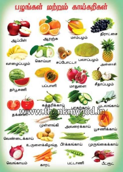 Fruits & Vegetables Chart in Tamil Manufacturer inMadurai ...