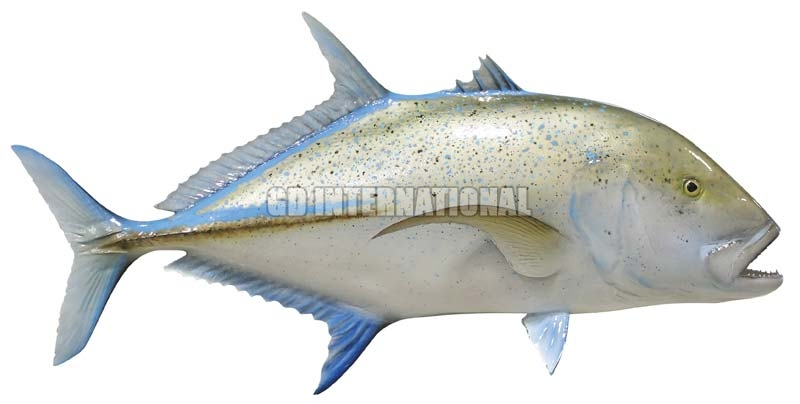Frozen bluefin trevally fish manufacturer in karaikal for Best way to freeze fish
