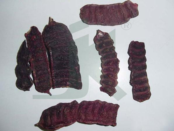 ACACIA CONCINNA EXTRACT (Shikkai extract)