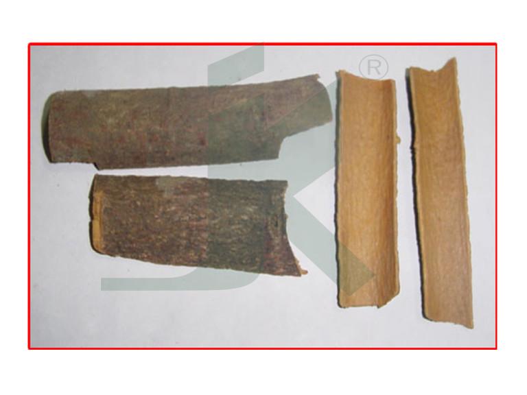 CINNAMOMUM CASSIA EXTRACT (Dalchini extract)