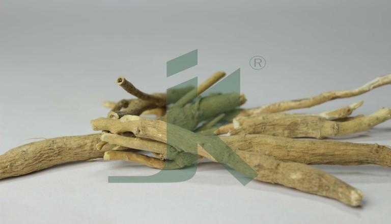WITHANIA SOMNIFERA EXTRACT (Ashwagandha, Winter Cherry extract)