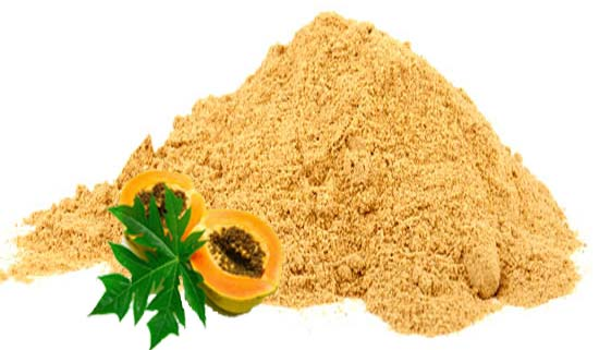 Dehydrated Papaya Powder