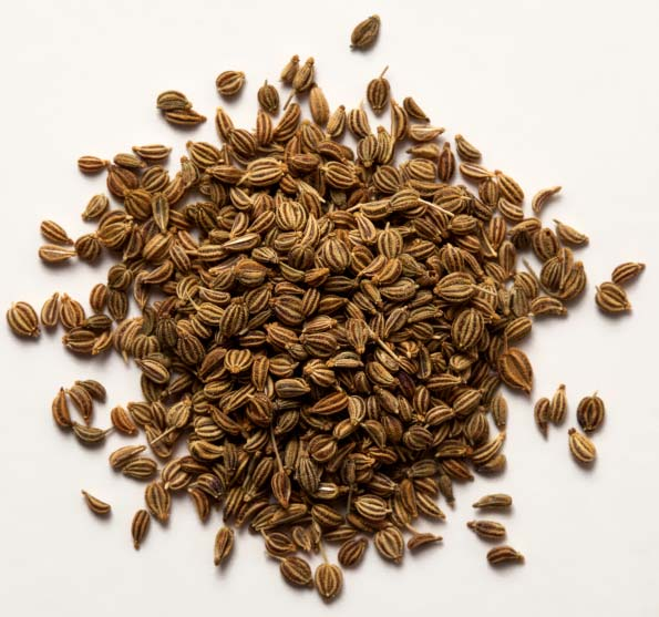 Buy Oregano Seeds from Vedan International, Mumbai, India ...