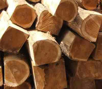 Buy Dabema Wood From Fahimex Cra Cameroon Id 2105574