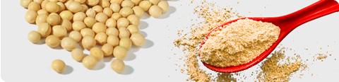 Toasted Full Fat Soya Flour