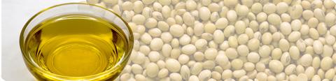 Trishul Refined Soybean Oil