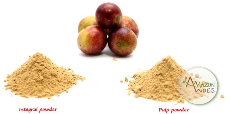 Organic Camu Camu Powder From Peru Manufacturer In Peru By Amazon Andes Export Sac Id 1932623
