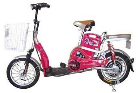 Wheel Hub Motor (E - 17)