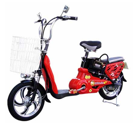 Electric Bicycle (TDP-06Z)