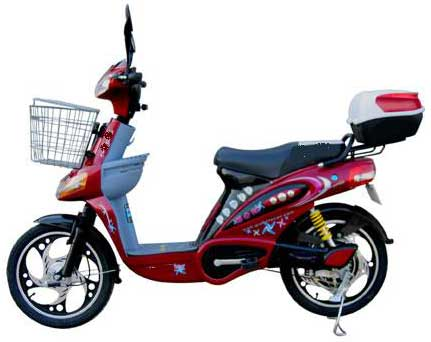 Electric Bicycle (V - 29)