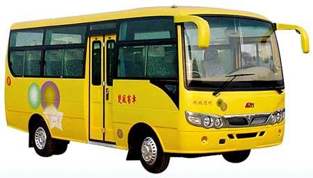 Electric Buses (Hqg6603eb3)