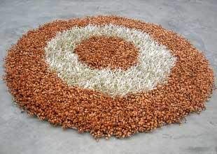 Shaggy Carpet (Round) (Shaggy Carpet (Round)