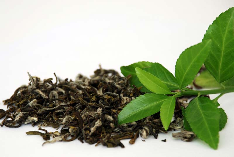 Green Tea Manufacturer in Kolkata West Bengal India by