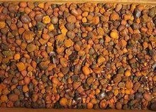 Cattle Gallstones for sale at low prices