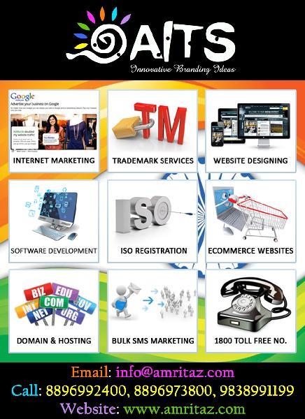 dynamic 10 pages website design services