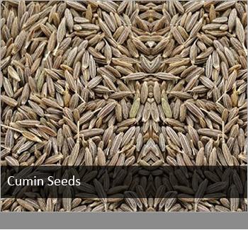 Cumin seeds (VEJ-2)