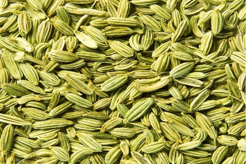Fennel Seeds (FE-1)