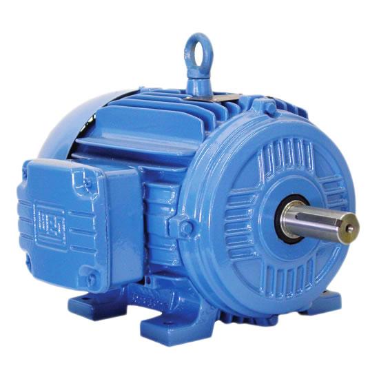 TEFC Motor