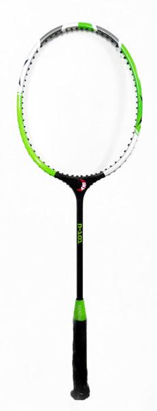 Ball Badminton Racket (ASHIM-N-101)