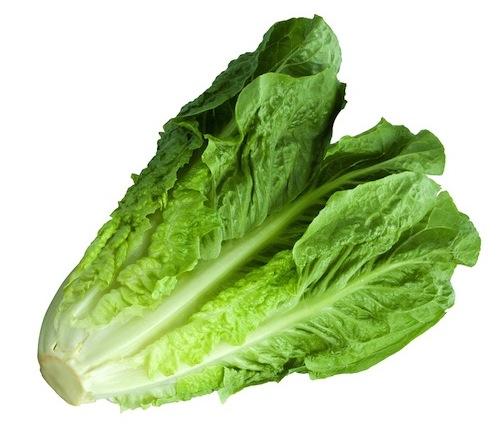 Lettuce (095)