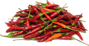 Thai Red Chilly (098)