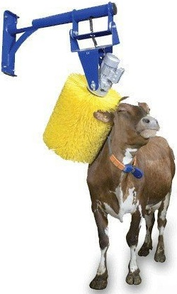 Cow Cleaning Brush