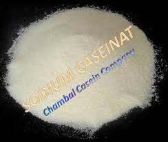 dried sodium caseinate