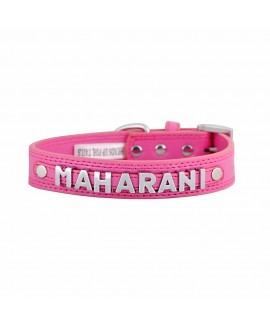 7 Letters Teal Pink-XL Personalised Dog Collar