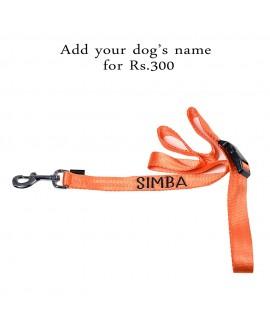 HUFT Barklays Dog Leash - Orange - XL