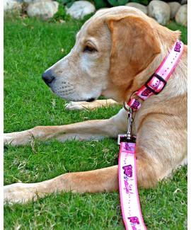 HUFT Bold Beautiful Martingale Dog Collar
