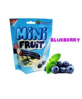 Mini Fruit Blueberry-Dog Chews 130 gms