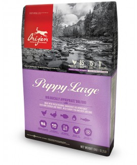 Orijen Puppy Large Dog Food - 6 kg